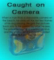 Caught on camera slab.jpg