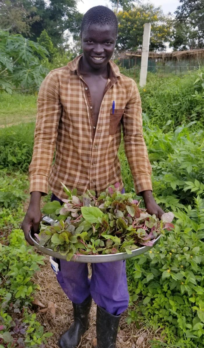 Market Garden Harvest