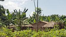 Remote village in Bungokho area.jpg