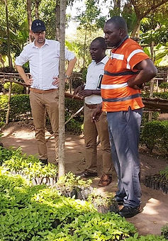 Buanini tree nursery with Jon Townley, S