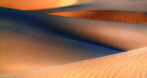 Traveling in the Desert