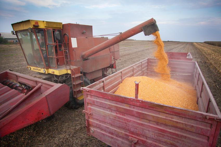 Corn harvester.jpg