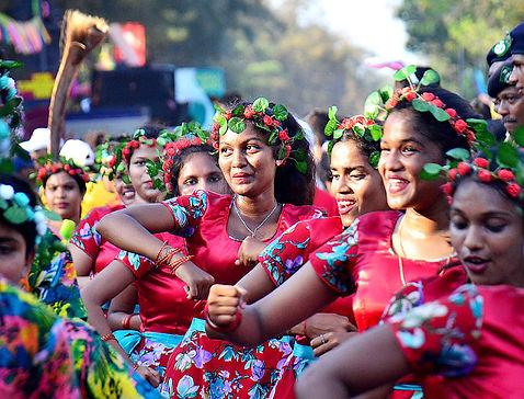 Goa-Carnival-2019 copy.jpg