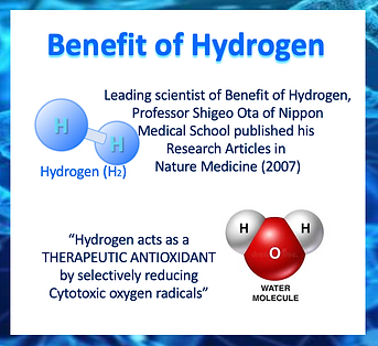 HydrogenResearch2007.png