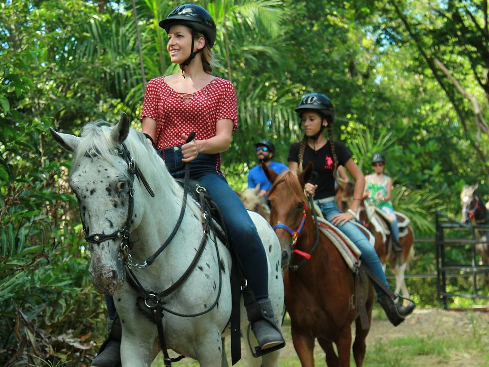 1-Hour-Rainforest-Horseback-Ride-image-1
