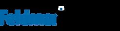 2945.Feldman.Industries.Logo.png