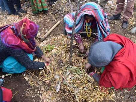 Himalayan Permaculture Centre: The Farmers' Handbook