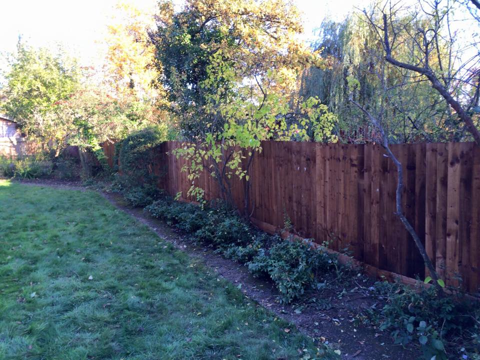 Fence (33 meters 5ft)