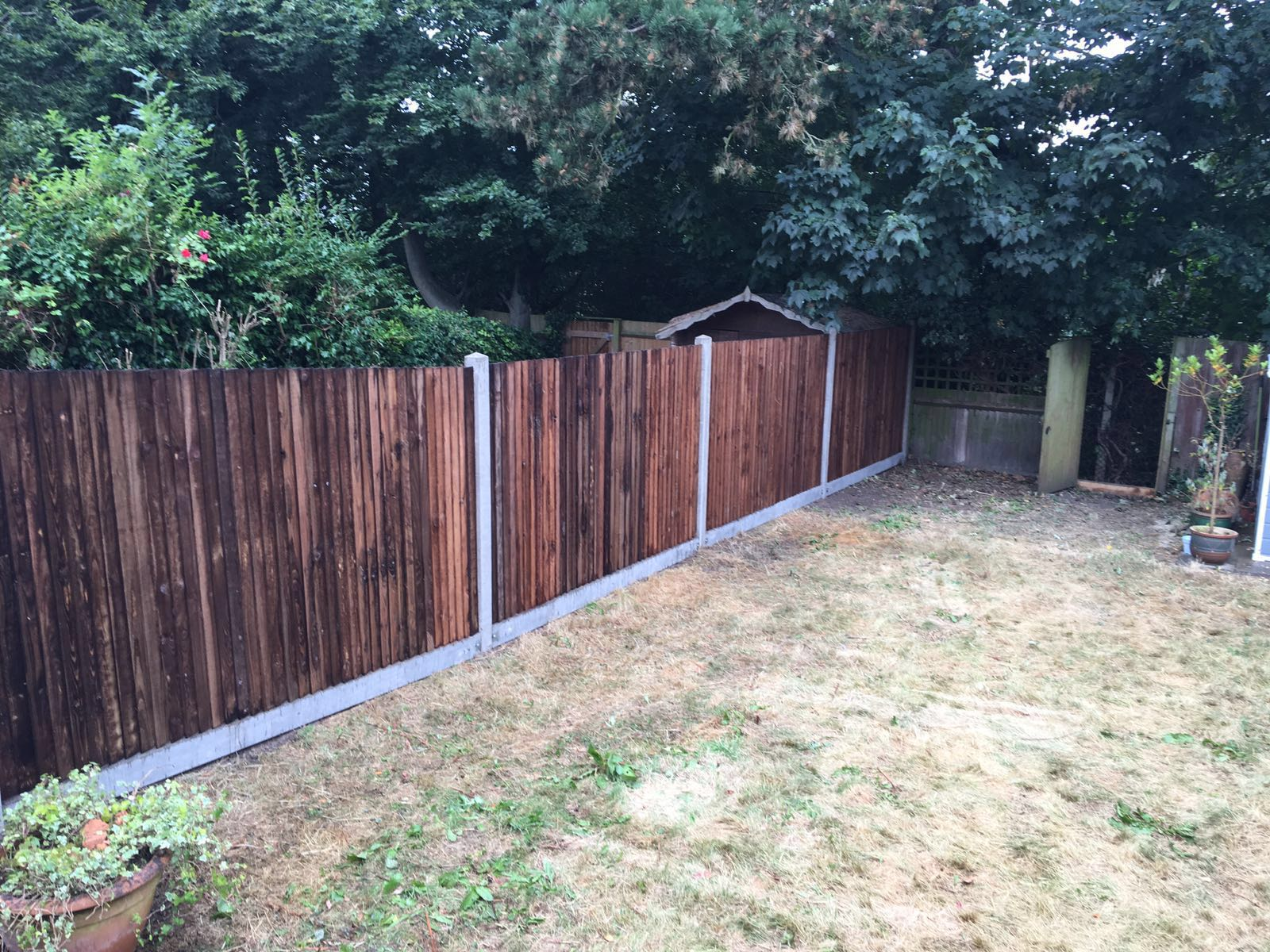 5ft featheredge fence