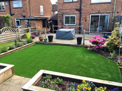 Artificial Lawn, Watford
