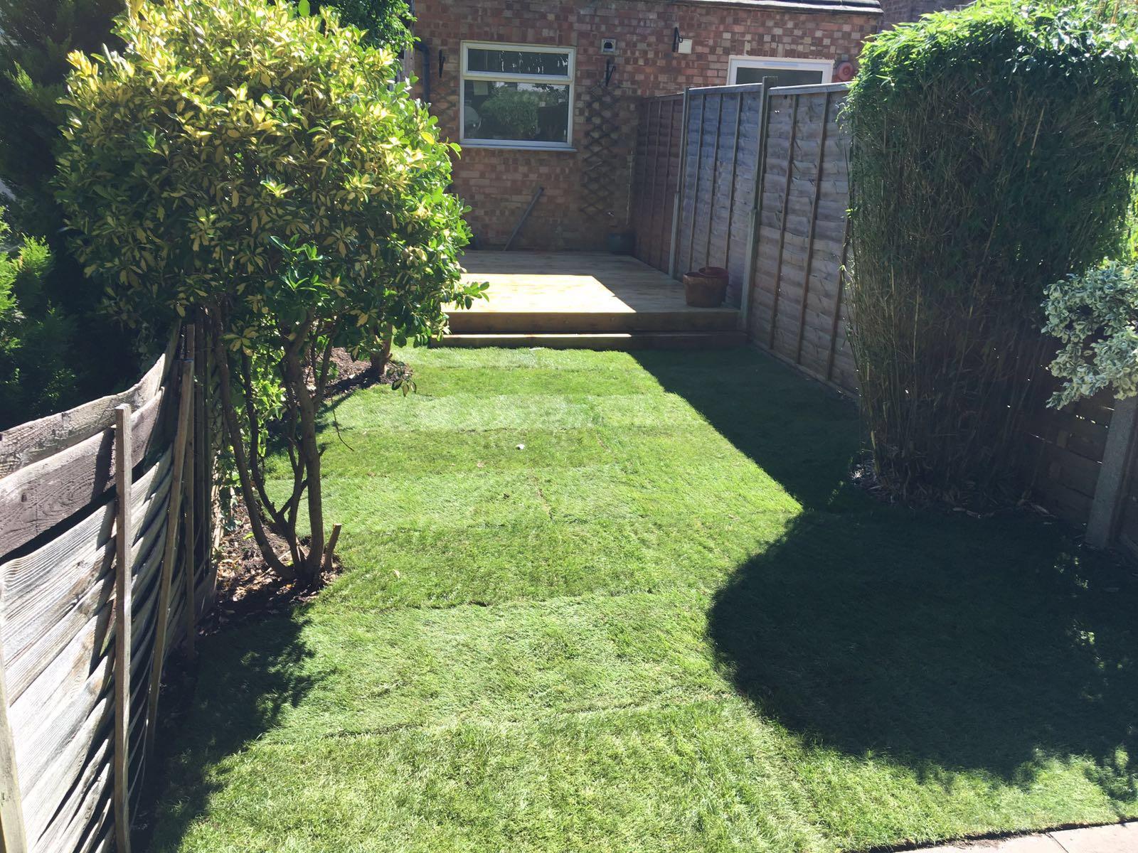 New lawn, Watford