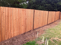 6ft Feather Edge Fencing