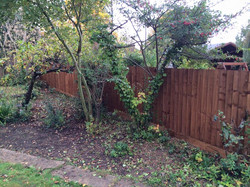 Fence (33 meters 5ft)