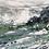 Thumbnail: Kelp Cove - 60 x 60cm