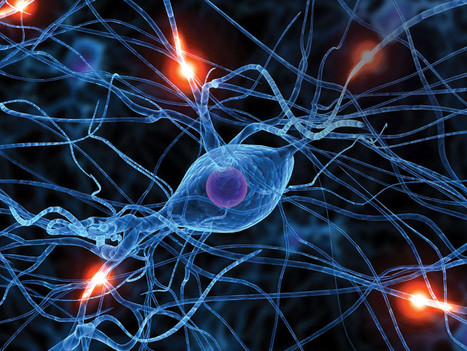The Neuroscience of Association and Dissociation