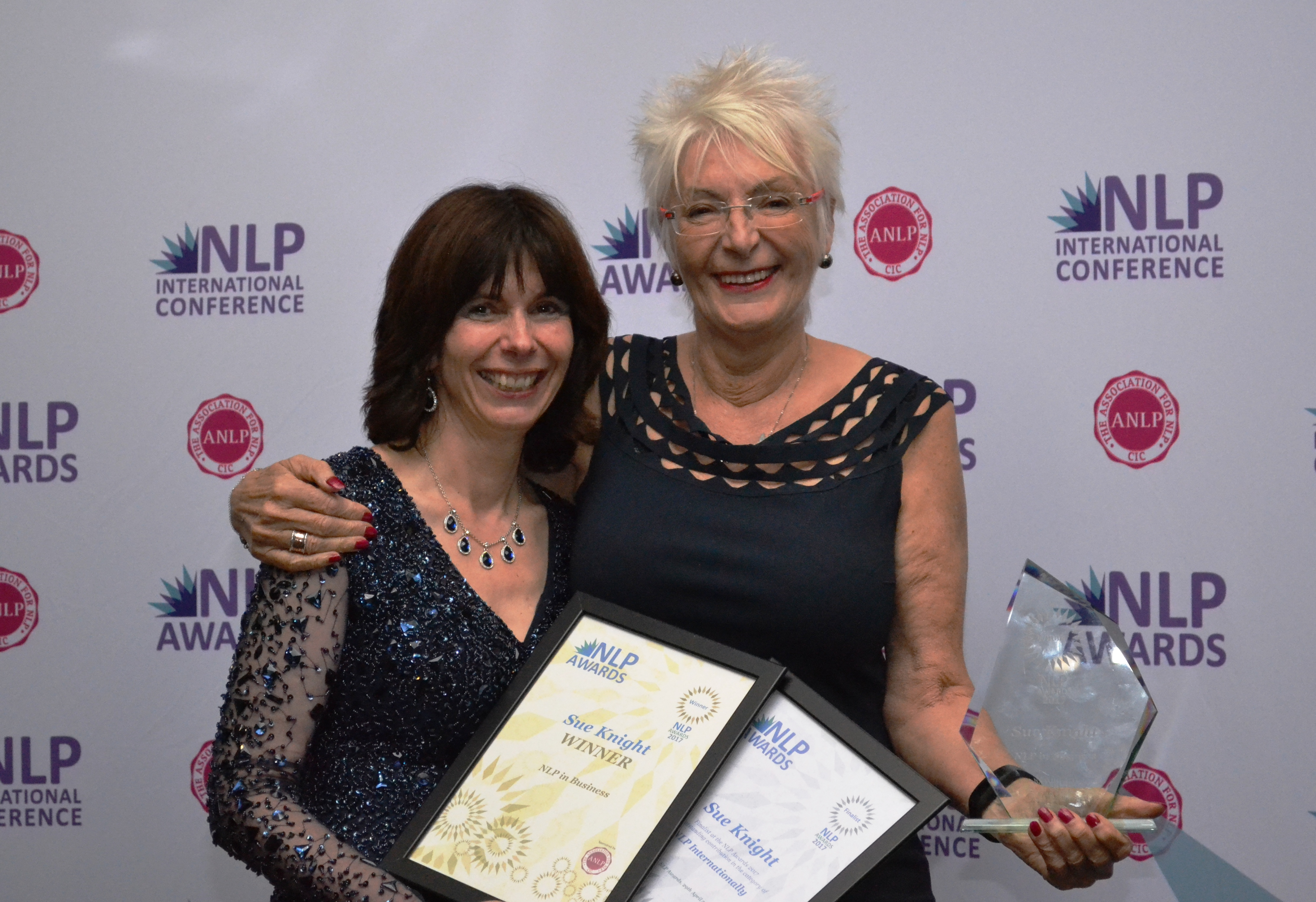 2017 NLP in Business Award Winner