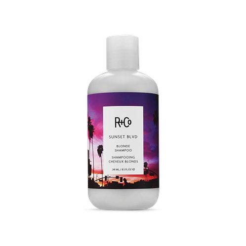 R&CO Sunset Blvd Shampoo