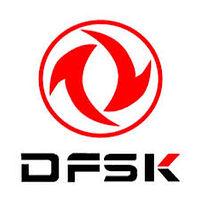 DFSK 2.jpeg