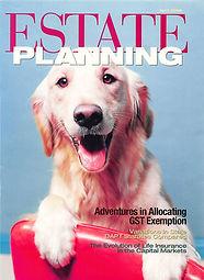 Estate Planning 2008 IDIT_Page_1.jpg
