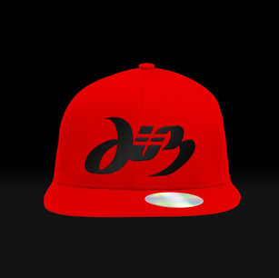 Diz-Snapback---Black-Letters-Red-Hat.jpg