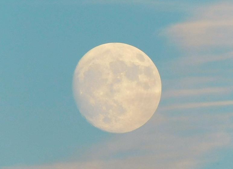 full-moon-rising-11-12-16-WQ7DLWL_edited.png