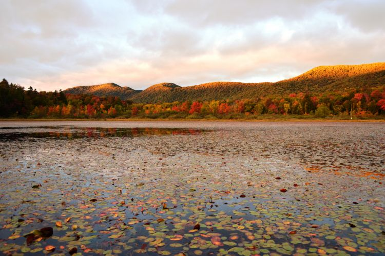 Green-Mountain-NF_Lefferts-Pond_USFS