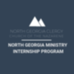 NORTH GEORGIA MINISTRY INTERNSHIP PROGRA