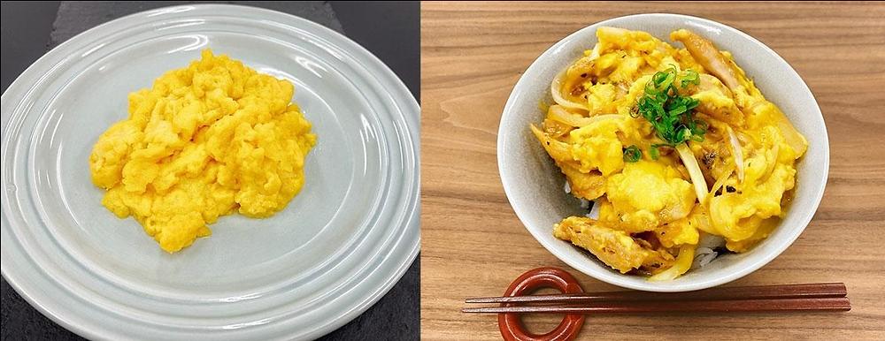 ביצה צמחונית עשויה מתחליפי חלבון