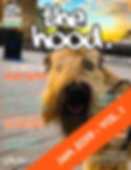 TheHood - Jan 2019 - page 1 WEB COVER.jp