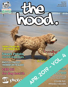 TheHood - Apr 2019 - page 1 WEB COVER.jp