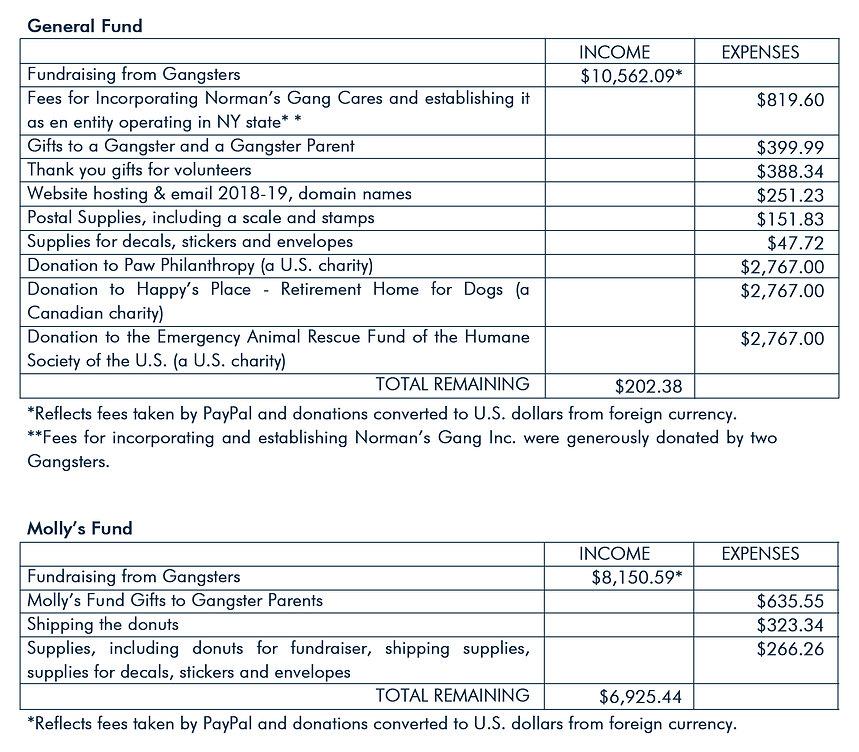 NG 2018-2019 Budget for web.jpg