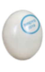 eggwithlogo.png
