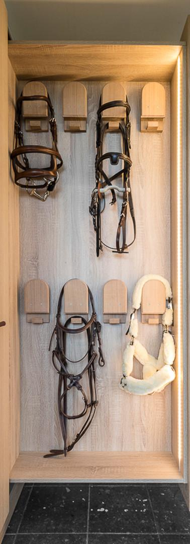 Cavalo Concept