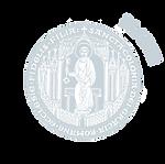 Logo-Platin.png