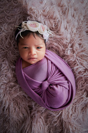 Newborn baby girl photo shoot Perth