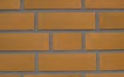 Corium Brick Color 250