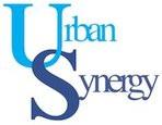 Urban Synergy Mentoring Programme