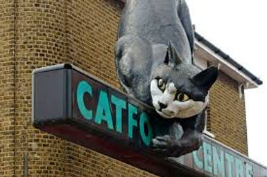 Catford Cat .jpeg