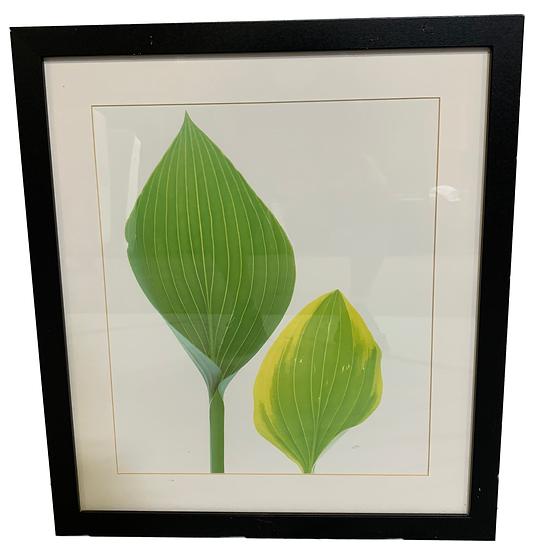 green leaf art in black frame