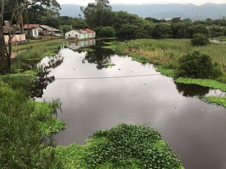Garrafas, plásticos e até sofás poluem trecho do rio Tietê em Mogi