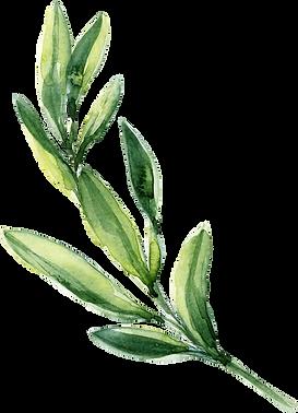 kisspng-watercolor-painting-leaf-waterco