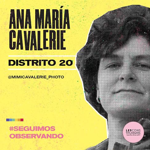 d20-anamaria-cavalerie.png