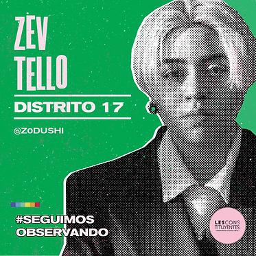 d17-zev-tello.png