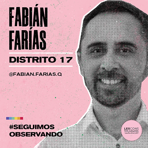 d17-fabian-farias.png
