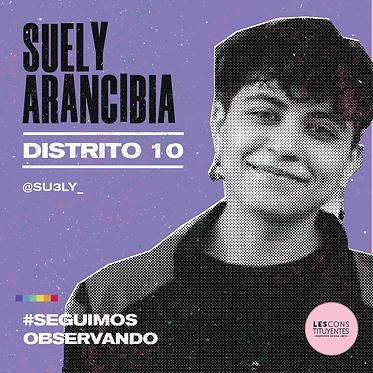 d10-suely-arancibia.png