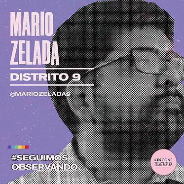 d9-mario-zelada.png