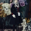 Thumbnail: The Heir by Aristocracy