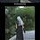 Thumbnail: Black Bamboo & Chasing Waves by Hua Shan