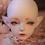 Thumbnail: FuSang Ancient & Modern(Body 58cm)