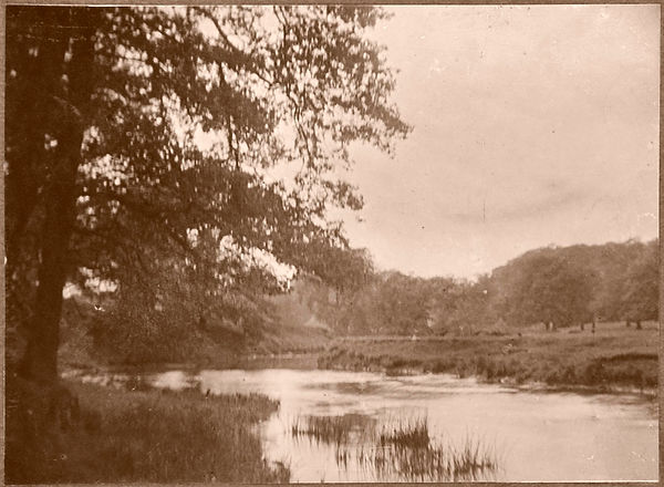 1918Book-No5_01.jpg